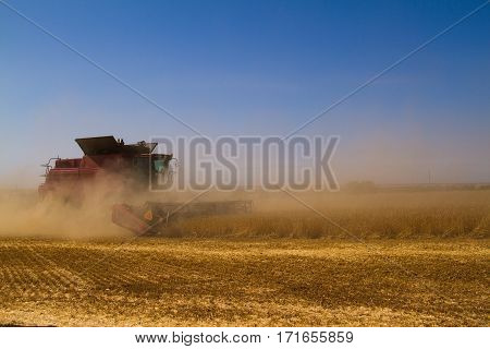 Combine Harvesters In A Field Of Wheat