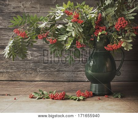 the red ashberry on old wooden background
