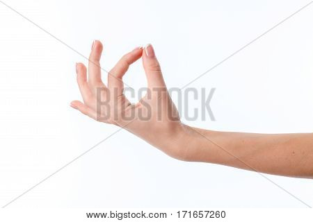 female hand stretched upward with clenched fingers isolated on white