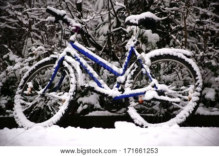 A snowbound bicycle stands at the edge of a walkway.