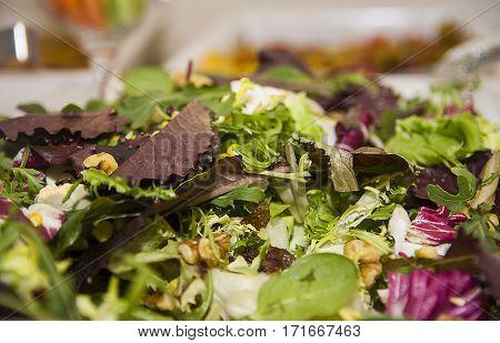 ensalada con distintas lechugas y aliño, de aperitivo