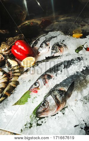 Seafood on ice. Fresh frozen fish on ice with lemon and red peppers and prawns. Fresh fish on white ice.
