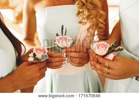The wedding buttonhole in the hand of bridesmaids