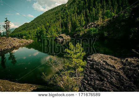 summer mountain lake with volcanic stones and wood on the bank. Taiga near Lake Teletskoye in the Altai region in Russia