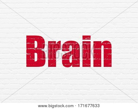 Medicine concept: Painted red text Brain on White Brick wall background