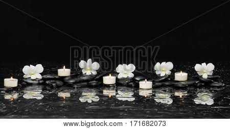 still life with five white orchid and candle on black stones