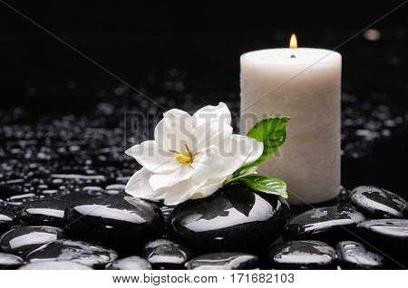 gardenia with candle with therapy stones