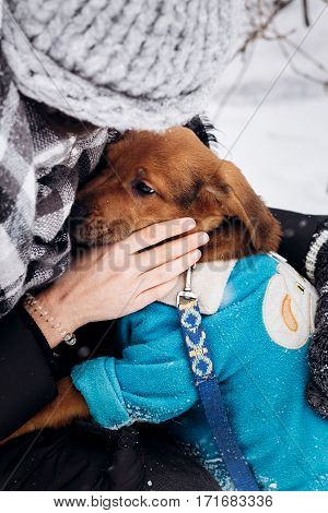 Stylish Hipster Woman Playing With Cute Puppy In Snowy Cold Winter Park And Caress. Moments Of True