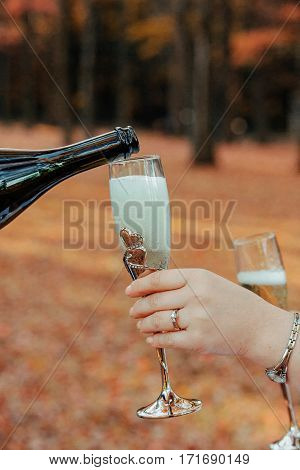 Bride Holding Wedding Champagne Glasses