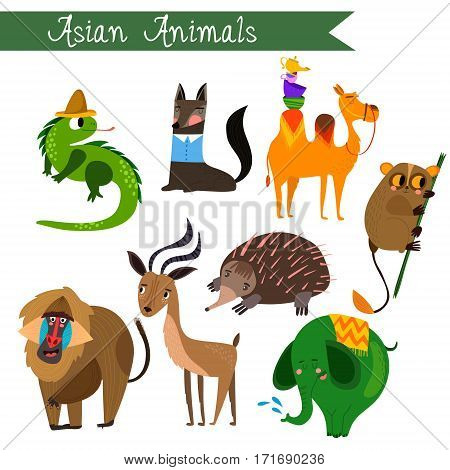 Asian Animals Vector Illustration.vector Set. Isolated On White Background. Asian  Animals Cartoon S