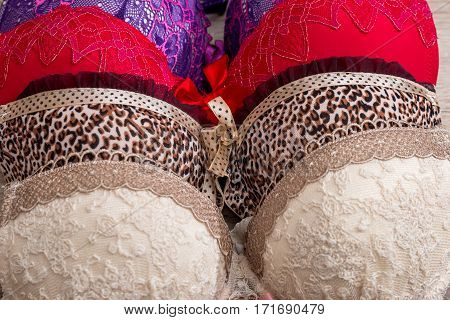 different Women's bras in shop close up