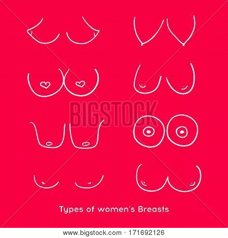 Types of women's Breasts. Women's Breast Icon Breast Icon Vector illustration
