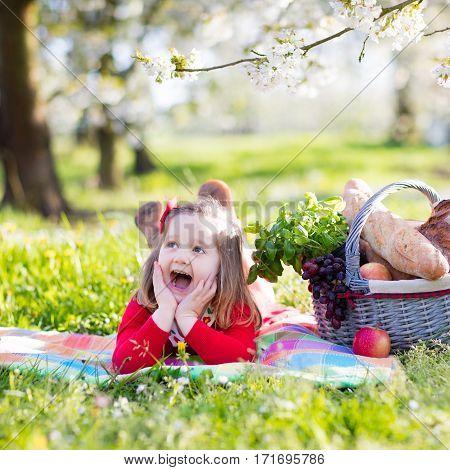 Child On Picnic. Little Girl In Spring Garden.