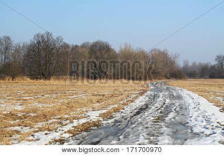 landscape of Poodri in the Czech Republic with melting snow on the path leading to the bare forest