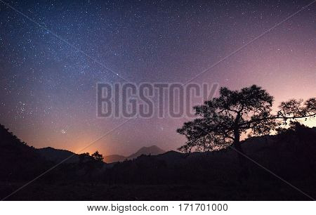 Colorful summer landscape in the Carpathian mountains. Sunset.