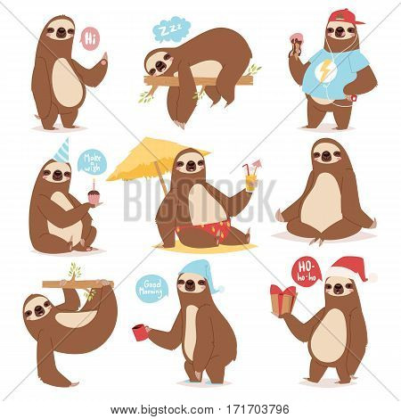 Laziness sloth animal character different pose like human cute lazy cartoon kawaii and slow down wild jungle mammal flat design vector illustration. Cheerful wildlife forest art happy zoo.
