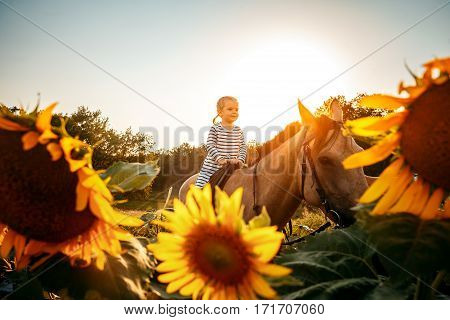 outdoors shot of cute little girl riding a beige equine.
