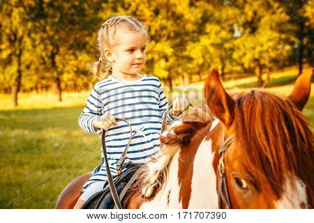 outdoors shot of cute little girl riding a chestnut equine. poster