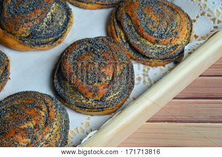 Fresh baked buns with poppy seeds on a tray on wooden background.