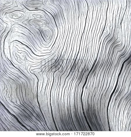 Wooden texture close up photo. White and grey wood background. White old tree near the sea. Curves and lines on rustic timber. Rough timber texture. Sea wood backdrop. Grey old tree on the beach