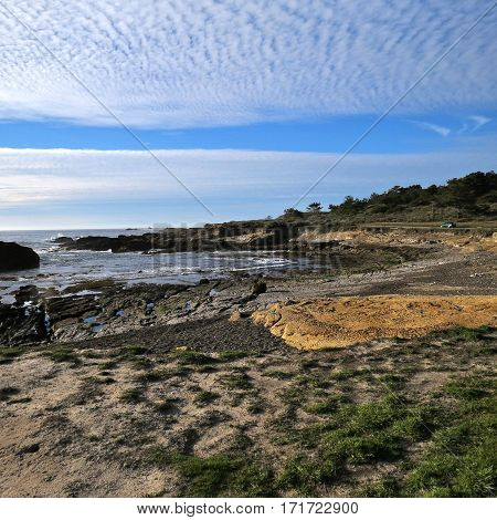 This is an image of Point Lobos in Carmel, California taken on a bright day with an interesting cloud cover.