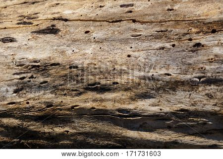 A Distressed Wooden Plank Background With Texture