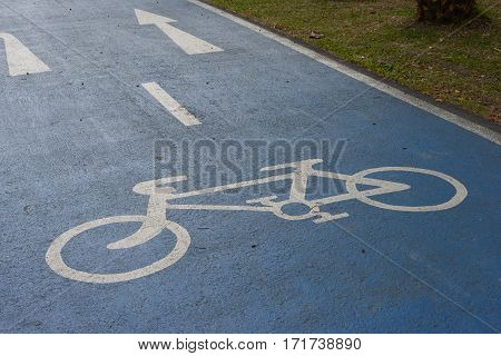 Bicycle lane signage on street in park