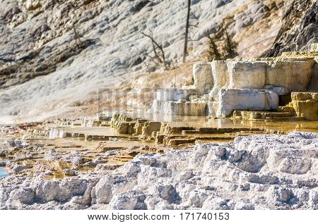 Mammoth hot springs travertine terraces in Yellowstone National Park with steam and step pools