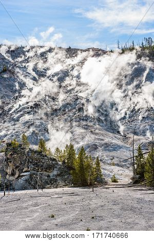 Roaring Mountain in Yellowstone National Park with hot springs and steam vents showing boiling water