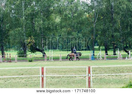 Riding school for dressage horses. Outdoor playground, autumn