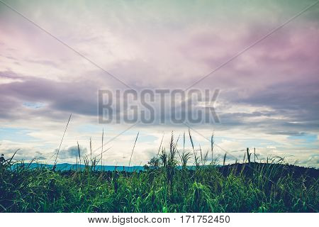 Landscape Of Beautiful Nature Against Vivid Sky And Cloudy Background.