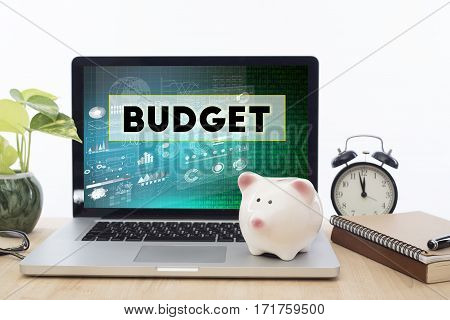 Budget homepage on the computer screen in workplace. business finance concept.