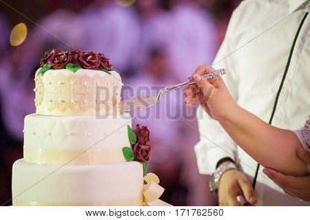 Cutting  beautiful wedding cake during dinner reception.