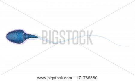 3d rendering blue sperm isolated on white
