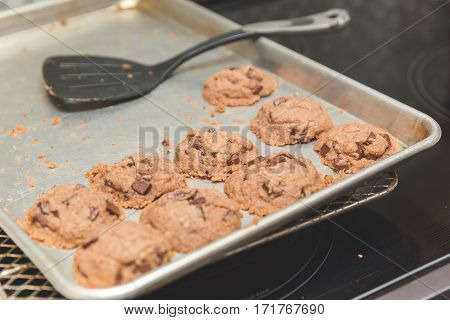 Fresh baked cookies in cookie pan with spatula nearby. This particular recipe used gluten-free ingredients.