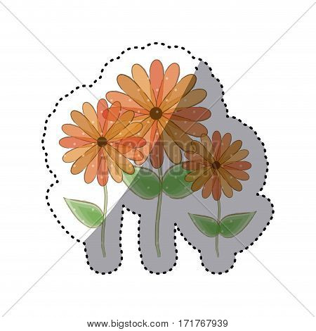 sticker faded set collection sunflowers floral icon design vector illustration