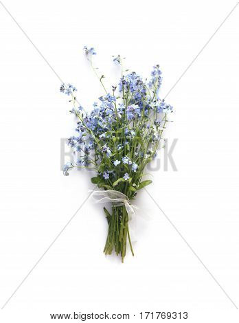 Forget-me-not blue forest flowers bouquet on white