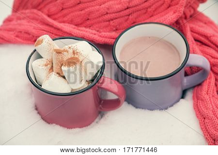 Hot Chocolate With Marshmallow In Two Cups