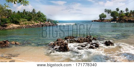 Palm trees and tropical vegetation on the coast paradise sandy beach and turquoise ocean.