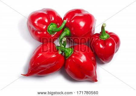 Pile Of Habanero Peppers (capsicum Chinense), Top View, Paths