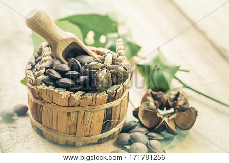 dried capsule seeds fruit of Sacha Inchi peanut in basket on wood