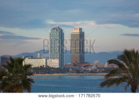 Barcelona Spain - January 08 2017: The modern tall buildings on Barceloneta beach with palm trees in the foreground