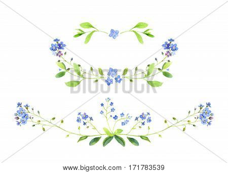 Watercolor illustration. Set of floral ornaments. Forget-me-not. Perfect for wedding invitations, greeting cards, logos, labels, badges or websites, blogs.
