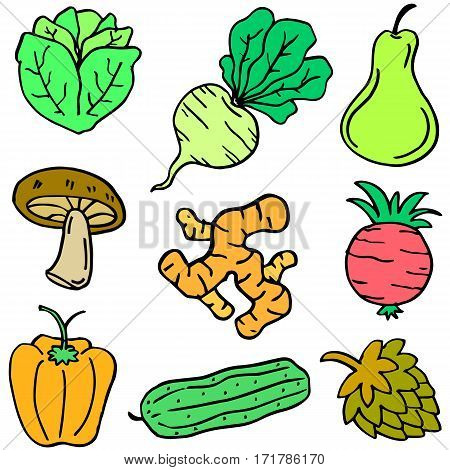 Illustration of vegetable object set collection stock