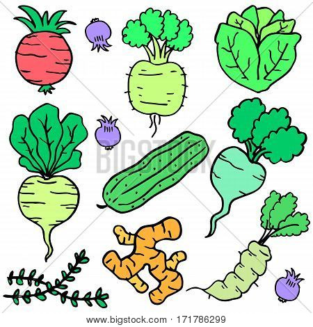 Collection stock of fresh vegetable doodles illustration