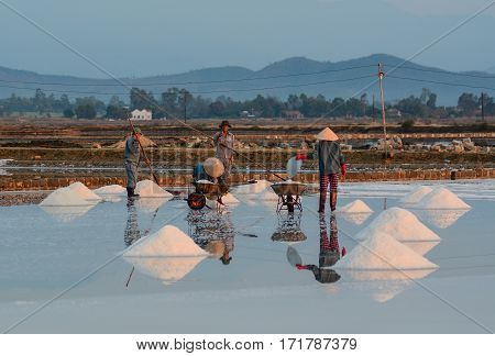 People Working On Salt Fields At The Sunny Day