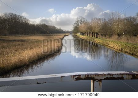 Perspective view over a chanel with typical Netherlands landscape with willows reed and water