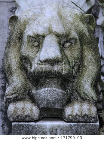 Eroded, weathered, religion, vintage cemetery tombstone lion sculpture.