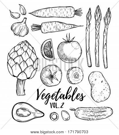 Hand Drawn Vector Illustration - Collection Of Vegetables Vol.2(carrots, Potatoes, Garlic, Tomatoes,