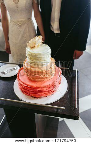 Happy Beautiful Newlyweds Cutting Delicious Wedding Cake Closeup